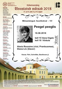 MM 8 Peegel Peeglis